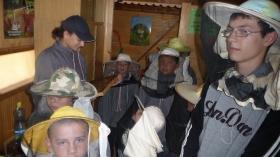 Ve včelím království 2011