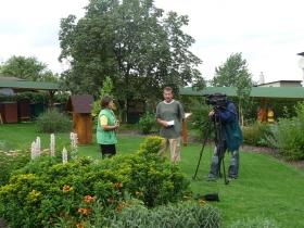 Natáčení Toulavé kamery
